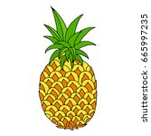 pineapple hand drawn vector... | Shutterstock .eps vector #665997235