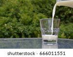 pouring milk into a glass | Shutterstock . vector #666011551