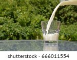 pouring milk into a glass | Shutterstock . vector #666011554