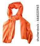 scarf summer. multicolored... | Shutterstock . vector #666020965
