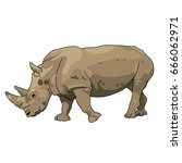 rhino african animal isolated... | Shutterstock .eps vector #666062971