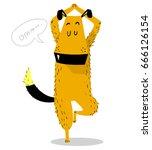 dog yoga. dog fitness. sporty... | Shutterstock .eps vector #666126154