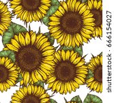 sunflower seamless pattern.... | Shutterstock .eps vector #666154027