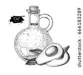 bottle of avocado oi.. vector...   Shutterstock .eps vector #666183289