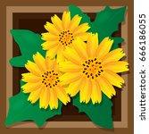 golden button flowers on brown... | Shutterstock .eps vector #666186055