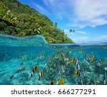 over and under the sea near the ... | Shutterstock . vector #666277291