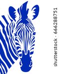 zebra head. vector illustration | Shutterstock .eps vector #666288751