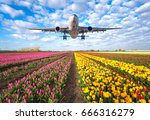 airplane. landscape with... | Shutterstock . vector #666316279