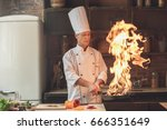 mature man professional chef... | Shutterstock . vector #666351649