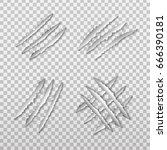 vector set of realistic... | Shutterstock .eps vector #666390181