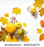 stylish composition of colorful ... | Shutterstock . vector #666416674