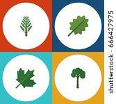flat icon nature set of alder ... | Shutterstock .eps vector #666427975