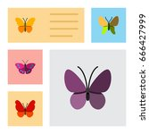 flat icon moth set of violet... | Shutterstock .eps vector #666427999