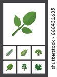 flat icon natural set of tree ... | Shutterstock .eps vector #666431635