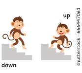 opposite up and down vector... | Shutterstock .eps vector #666447061