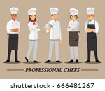 professional chef set  vector... | Shutterstock .eps vector #666481267