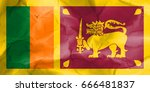flag of sri lanka | Shutterstock . vector #666481837