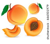 whole peach fruit and his... | Shutterstock .eps vector #666501979