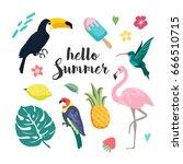summer design elements. set... | Shutterstock .eps vector #666510715