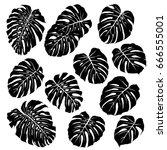 silhouettes of monstera leaves. ...   Shutterstock .eps vector #666555001