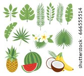 set of cute tropical leaves and ... | Shutterstock .eps vector #666555514