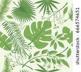 exotic leaves  rainforest.... | Shutterstock .eps vector #666574651