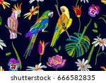 tropical paradise pattern.... | Shutterstock .eps vector #666582835
