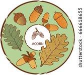 acorn label. vector color...   Shutterstock .eps vector #666618655