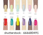 set of different shapes and... | Shutterstock .eps vector #666680491