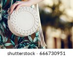 close up of small round stylish ... | Shutterstock . vector #666730951