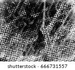 grunge black and white circle... | Shutterstock . vector #666731557
