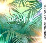 paradise lettering. vector palm ... | Shutterstock .eps vector #666736741