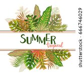 tropical summer pattern with... | Shutterstock .eps vector #666746029