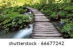 Bridge In The Woods Across The...