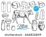 dairy products vector... | Shutterstock .eps vector #666826849