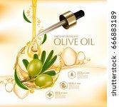 olive oil organics natural skin ... | Shutterstock .eps vector #666883189