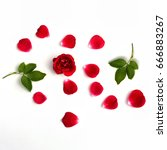 Stock photo red roses with petals on white background top view 666883267