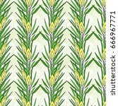 seamless pattern with rooibos... | Shutterstock .eps vector #666967771