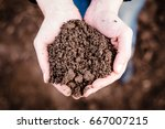 soil in hand  palm  cultivated... | Shutterstock . vector #667007215