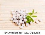 medicine herb. herbal pills... | Shutterstock . vector #667015285