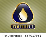 gold badge with drop icon and... | Shutterstock .eps vector #667017961