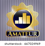 shiny badge with chart icon... | Shutterstock .eps vector #667024969