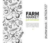 vegetable hand drawn vintage... | Shutterstock .eps vector #667026727
