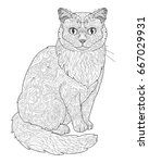 cat doodle coloring book page... | Shutterstock .eps vector #667029931