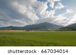 mountain meadows in the early... | Shutterstock . vector #667034014