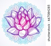 vector hand drawn beautiful... | Shutterstock .eps vector #667084285