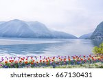 beautiful view of the lake... | Shutterstock . vector #667130431