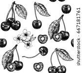 juicy cherry. vector seamless... | Shutterstock .eps vector #667181761