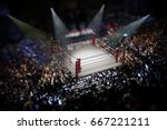 empty boxing ring surrounded... | Shutterstock . vector #667221211