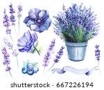 a set of elements  anemones ... | Shutterstock . vector #667226194